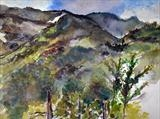 Tuscan Hills by Richard Liley, Painting
